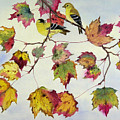 Birds On Maple Tree 10 by Ying Wong