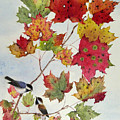Birds On Maple Tree 6 by Ying Wong
