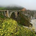 Bixby Bridge by Harry Spitz