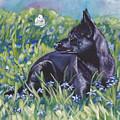 Black Australian Kelpie by Lee Ann Shepard