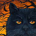 Black Cat And Moon by Linda Apple