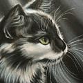 Black-white by Valentina Vassilieva