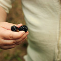 Blackberry Baby by Meaghan Jacklitch
