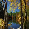 Bliss - New England Fall Landscape Hammock by Jon Holiday