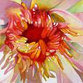 Bloom by Glenford John