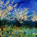 Blooming Appletrees 56 by Pol Ledent