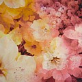 Blooms-of-summer by Nancy Newman