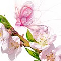 Blossom And Butterflies by Sharon Lisa Clarke