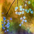 Blue Autumn Berries by Judi Bagwell