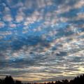 Blue Cloud  Neelamegam by Philip Neelamegam