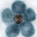Blue Flower Cloud by Kim Henderson