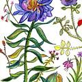Blue Flowers 55 by Julie Richman