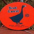 Blue Goose by Racquel Morgan