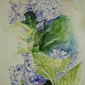 Blue Hydrangea by Lizzy Forrester