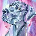 Blue Mood - Great Dane by Lyn Cook