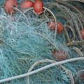 Blue Net by Michael Henderson