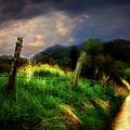 Blue Ridge Mountain Country Road by Gray  Artus