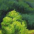 Blue Ridge Sentinel by Wynn Creasy