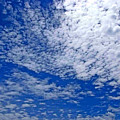 Blue Sky With Clouds by Dragica  Micki Fortuna