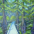 Boardwalk At Cypress Preserve by Sheri Hubbard