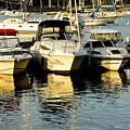 Boats Reflected by Carol F Austin