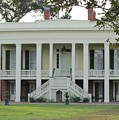 Bocage Plantation by Michelle Powell