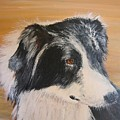 Border Collie Study by Leonie Bell
