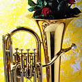 Brass Tuba With Red Roses by Garry Gay