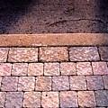 Brick Sidewalk 3 Wc by Lyle Crump