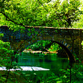 Bridge Over The Wissahickon by Bill Cannon