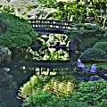 Bridge Over Tranquil Waters by David Bearden
