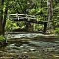 Bridge To Serenity by Scott Wyatt
