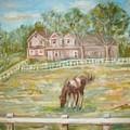 Brown And White Horse by Joseph Sandora Jr