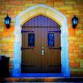 Brown Doors by Perry Webster