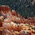 Bryce Canyon  by Jane Rix