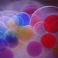 Bubble by Robert Shahbazi