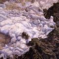 Bubbling Sea Rocks by Olga Spiegel