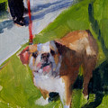 Buddy On A Red Leash by Merle Keller