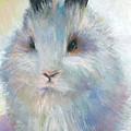 Bunny Rabbit Painting by Svetlana Novikova