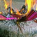 Burning Joss Sticks by Michele Burgess