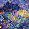 Burst Of Color-last Night In Monets Gardens by Tara Moorman