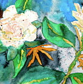 Busy Gardenias by Beverley Harper Tinsley