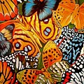 Butterfly Abstract Commission by Marcia Baldwin