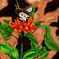 Butterfly And Flower by Stan Hamilton