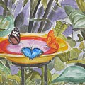 Butterfly Sanctuary At Niagara Falls by Geeta Biswas