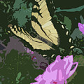 Butterfly's Delight by Trish Tritz