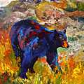 By The River - Black Bear by Marion Rose