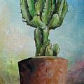 Cactus 3 by Muriel Dolemieux