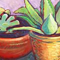 Cactus In Planters by Linda Ruiz-Lozito