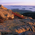Cadillac Mountain At Sunrise by John Burk